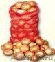 Сетка-мешок (упаковка для овощей и фруктов) от фирмы ООО Эталон - Изображение #4, Объявление #293802