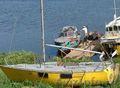 Продажа -  яхта для спорта и туризма